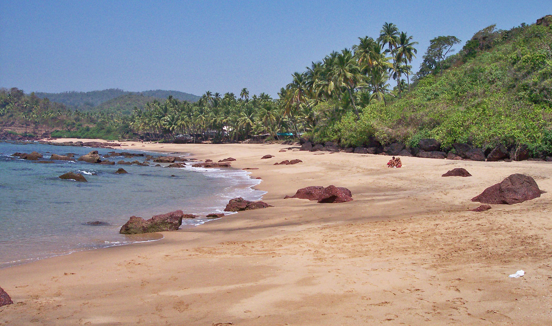 Гоа пляж кола фото